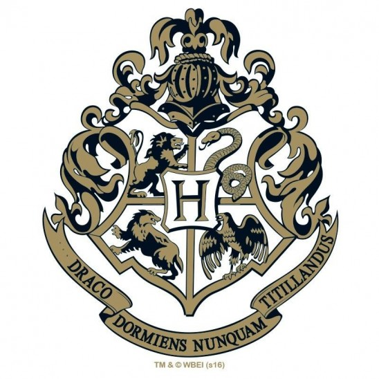 Ποτήρι Hogwarts (290ml)