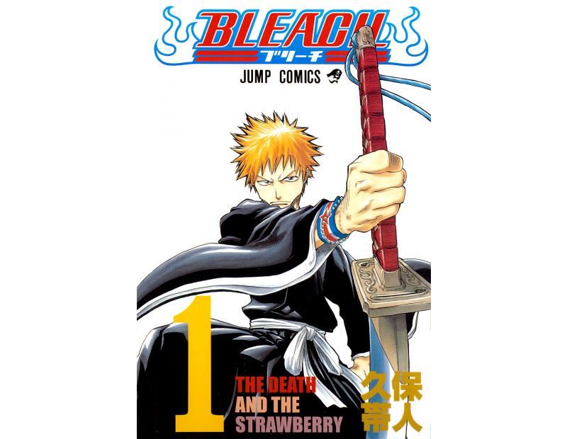 Manga Bleach Τόμος 01 (English)