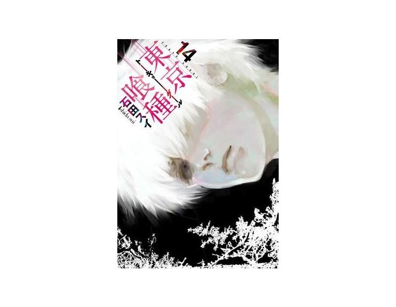 Manga Tokyo Ghoul Τόμος 14 (English)