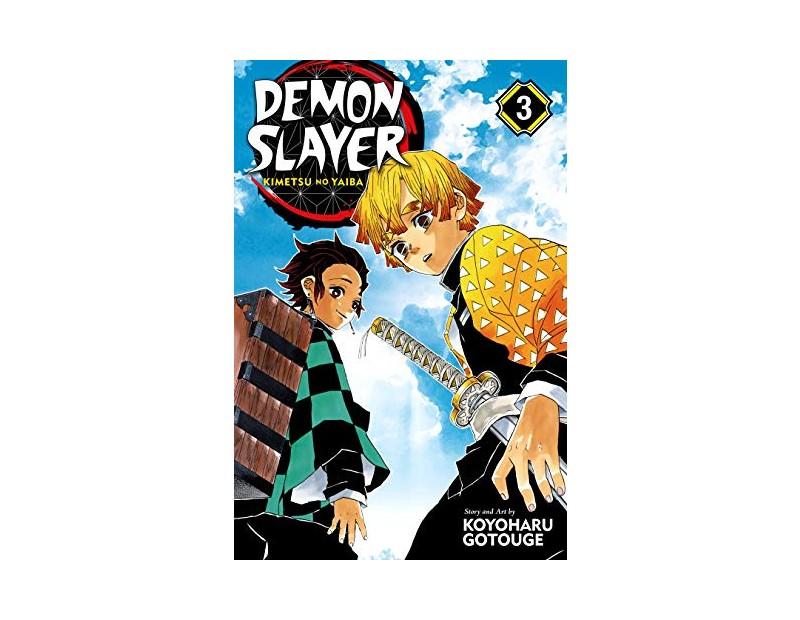 Manga Demon Slayer Τόμος 3 (English)