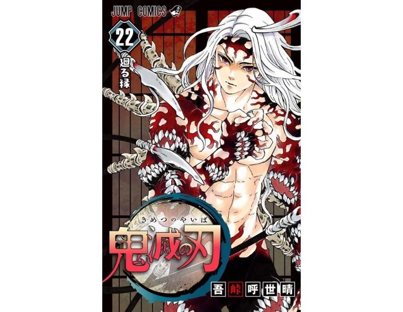 Manga Demon Slayer Τόμος 22 (English)
