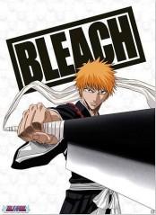 Αφίσα Ichigo με Zanpakuto (38x52)